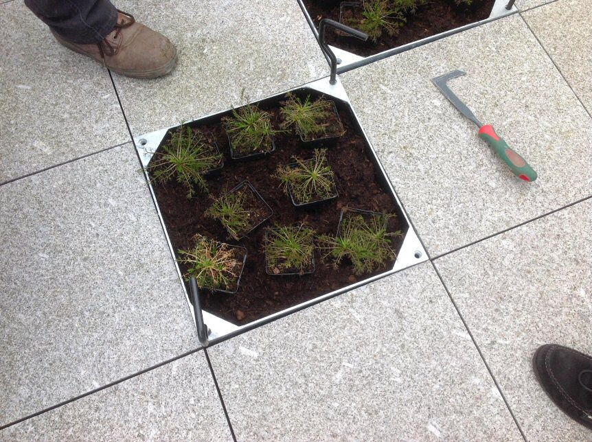EcoGrid Blog - Recessed Planter Trays