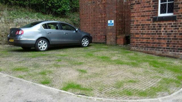EcoGrid Testimonial - Grass Filled Car Parking