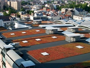 Ecogrid green roof examples