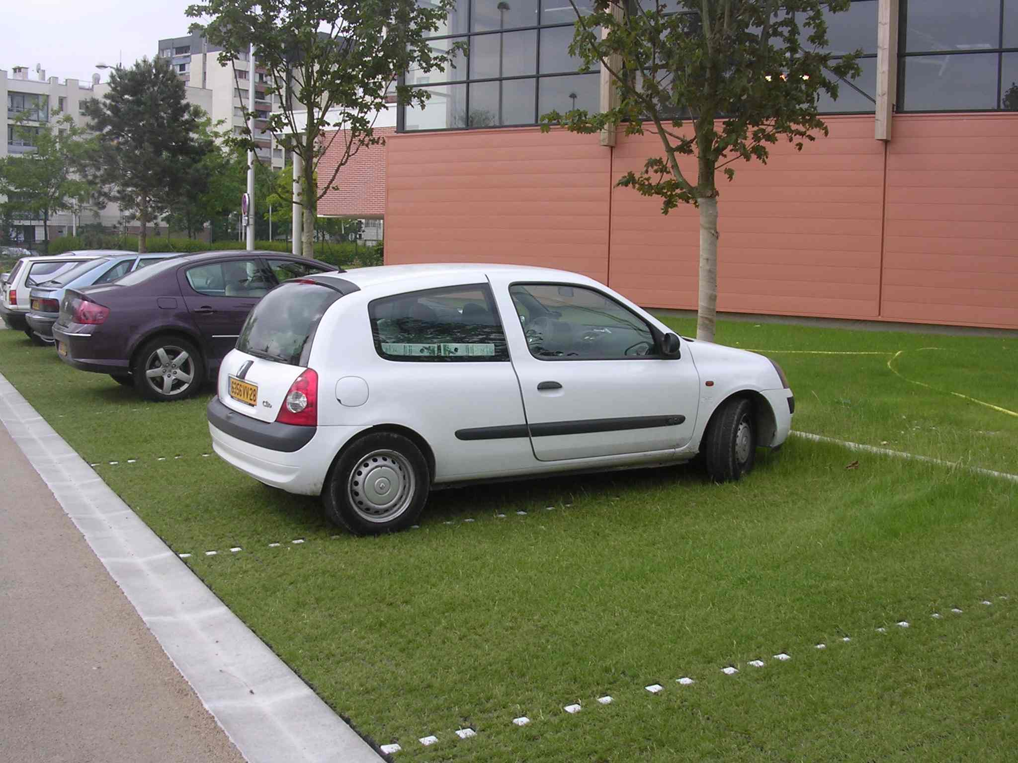 EcoGrid - Reinforced Grass Parking