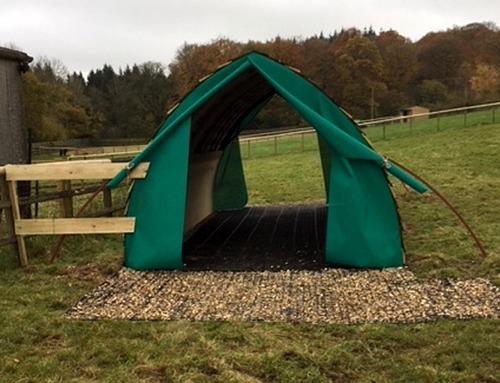 Horse Shelter Base
