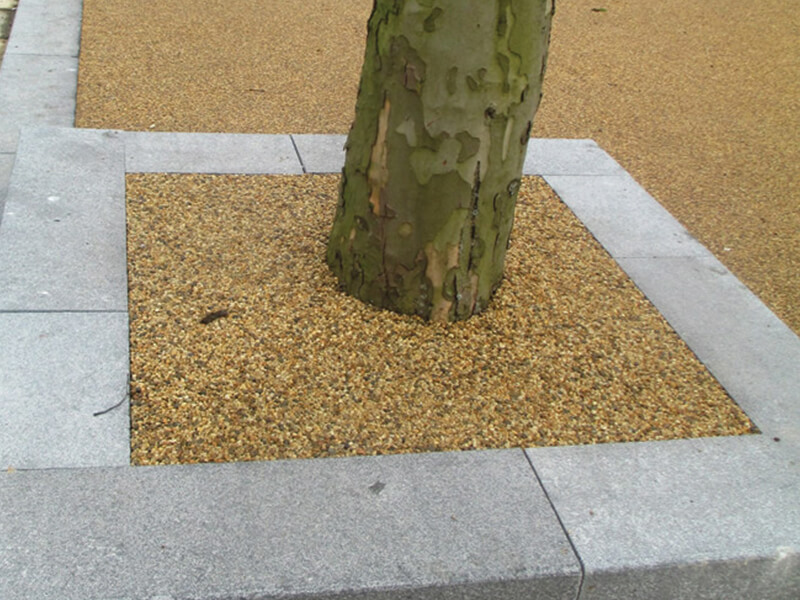 Tree in raised pit bed with sand stone