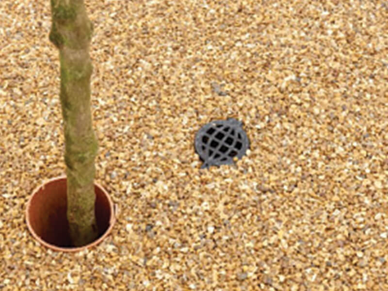 Tree pit with sand stone