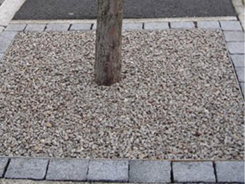 Tree with grey stone